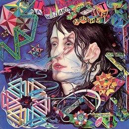 a wizard a true star psychedelic album by todd rundgren
