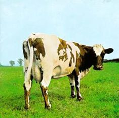 atom heart mother cow cover