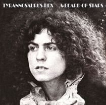 Beard of Stars album cover Marc Bolan